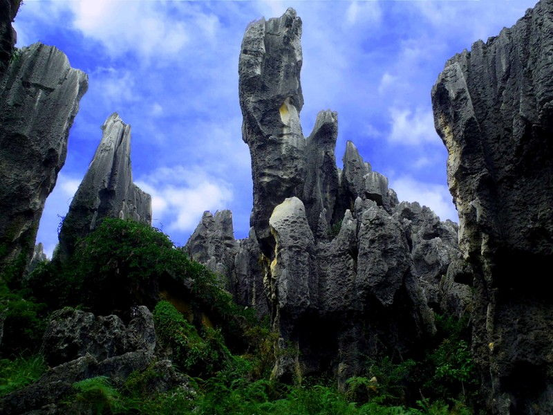 Travel Photo Roulette Stone Forest Yunnan Province China